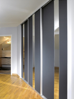 Sliding doors Galaxy mat glass dark Gray and miror